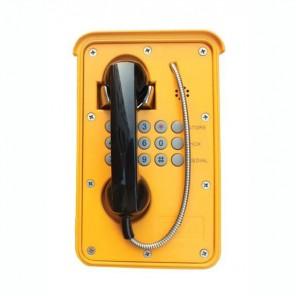ATL Delta 9000-C15 Outdoor Phone