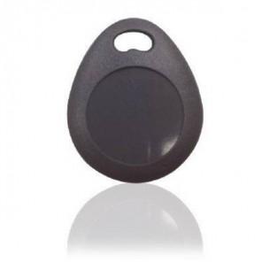 Blaupunkt TAG-S1 Key (1)